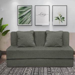 green sofa cum bed (3)